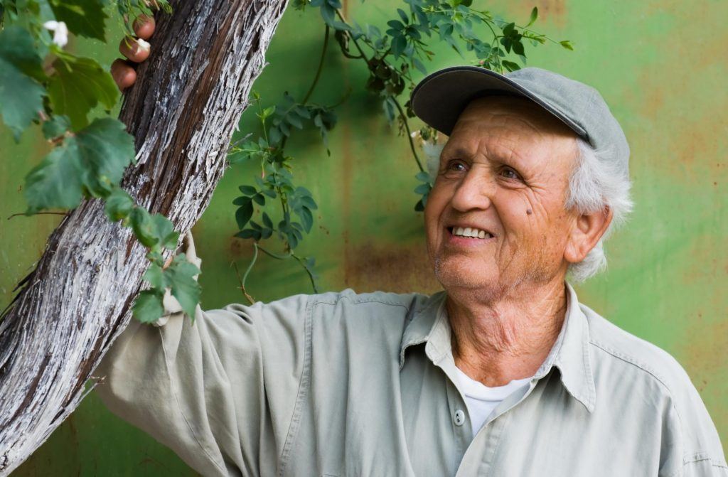 old man looking and touching a tree